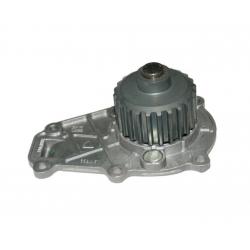 DCI Ligier Microcar Lombardini Pump